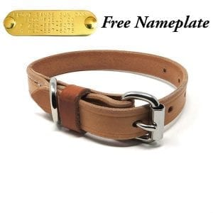 3/4 Inch Harness Leather Puppy Collar