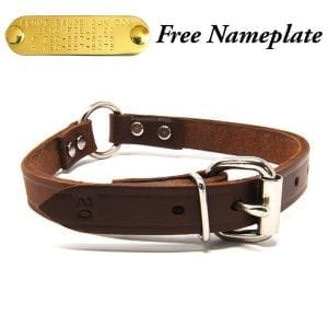 3/4 Inch Leather Center Ring Collar