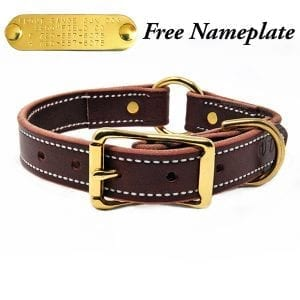 1 Inch Burgundy Leather Center Ring Collar